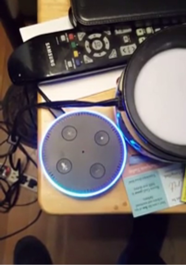 Alexa... Are you connected to the CIA?