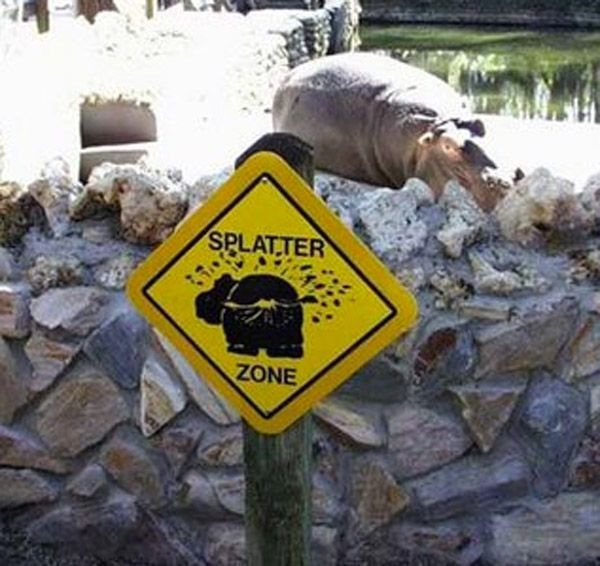 33 crazy signs that are there for a good reason