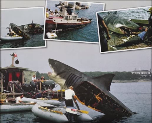 "Have You Ever Wondered What Happened to the ""Orca"" Boat in Jaws?"