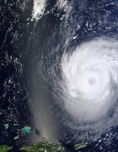10 victims of Hurricane Irma who fought back with humour