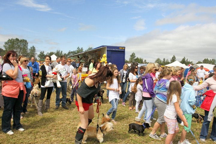 Tips for the Most Appropriately Dressed Lady at the Dungarvan Show