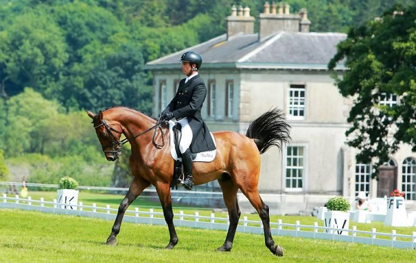 Camphire Horse Trials continue in Cappoquin today