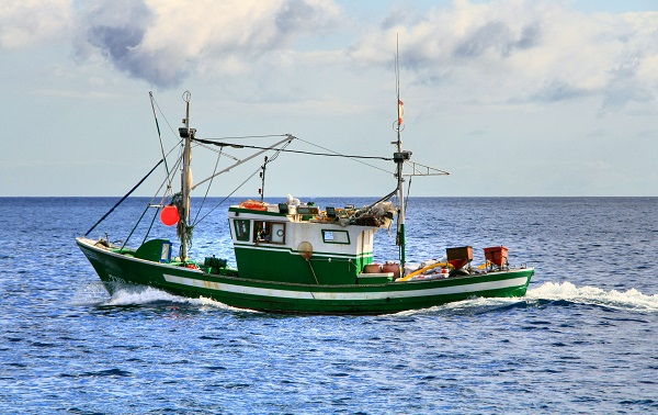 Waterford councillor says Ireland's fishing industry has lost a key ally after Britain withdraws from fishing deal
