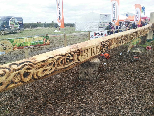 Waterford woodcarver chainsaws his way into the world records