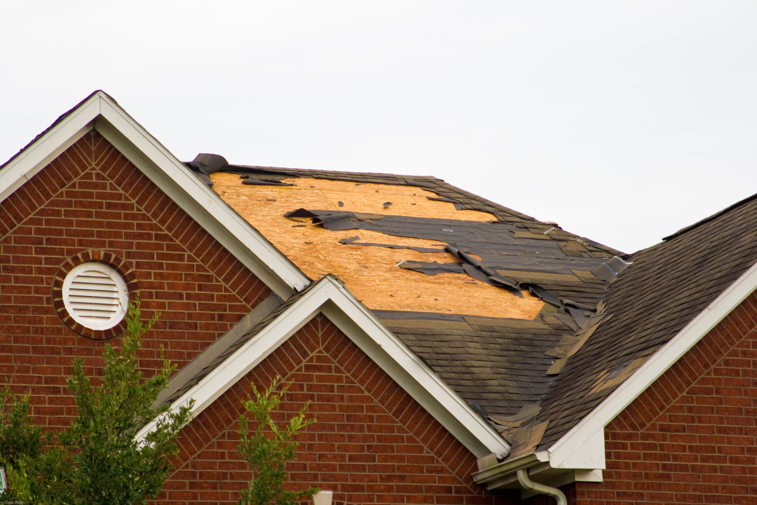 Roofs lifted from houses on Brown Street in Portlaw