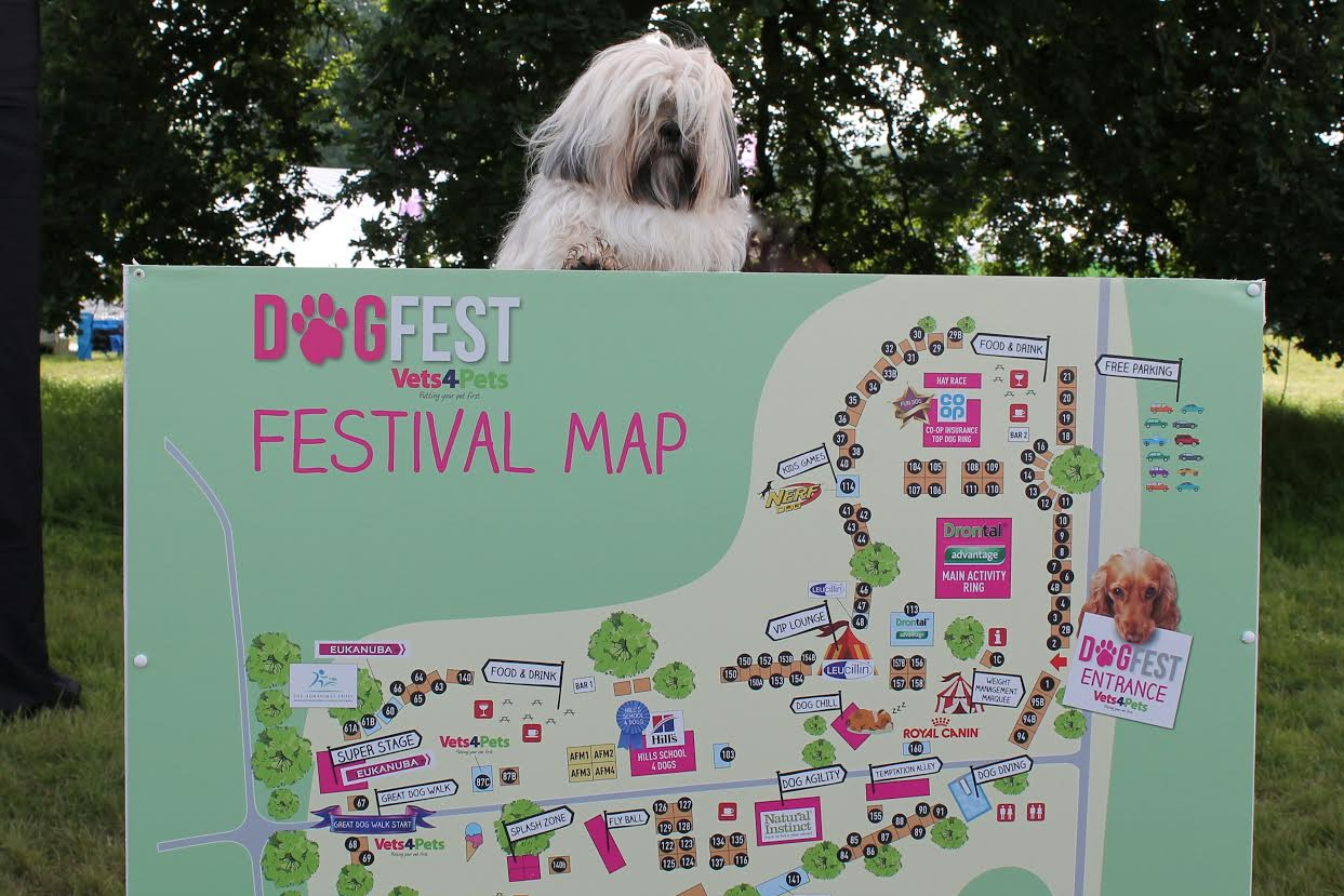 """Listen: Dog festivals, prisoners buying dogs, and the """"Waterford Eye"""" form Twitter Thursday with Sean Defoe"""