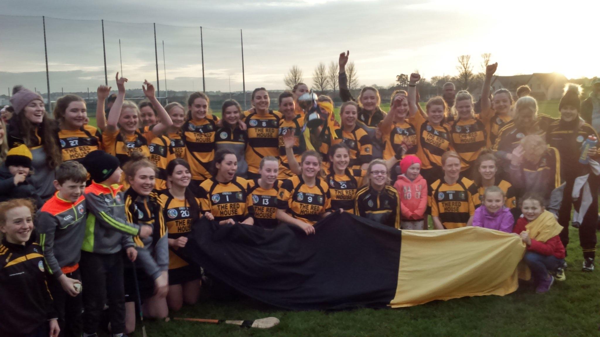 Lismore land Munster Intermediate Camgoie title!