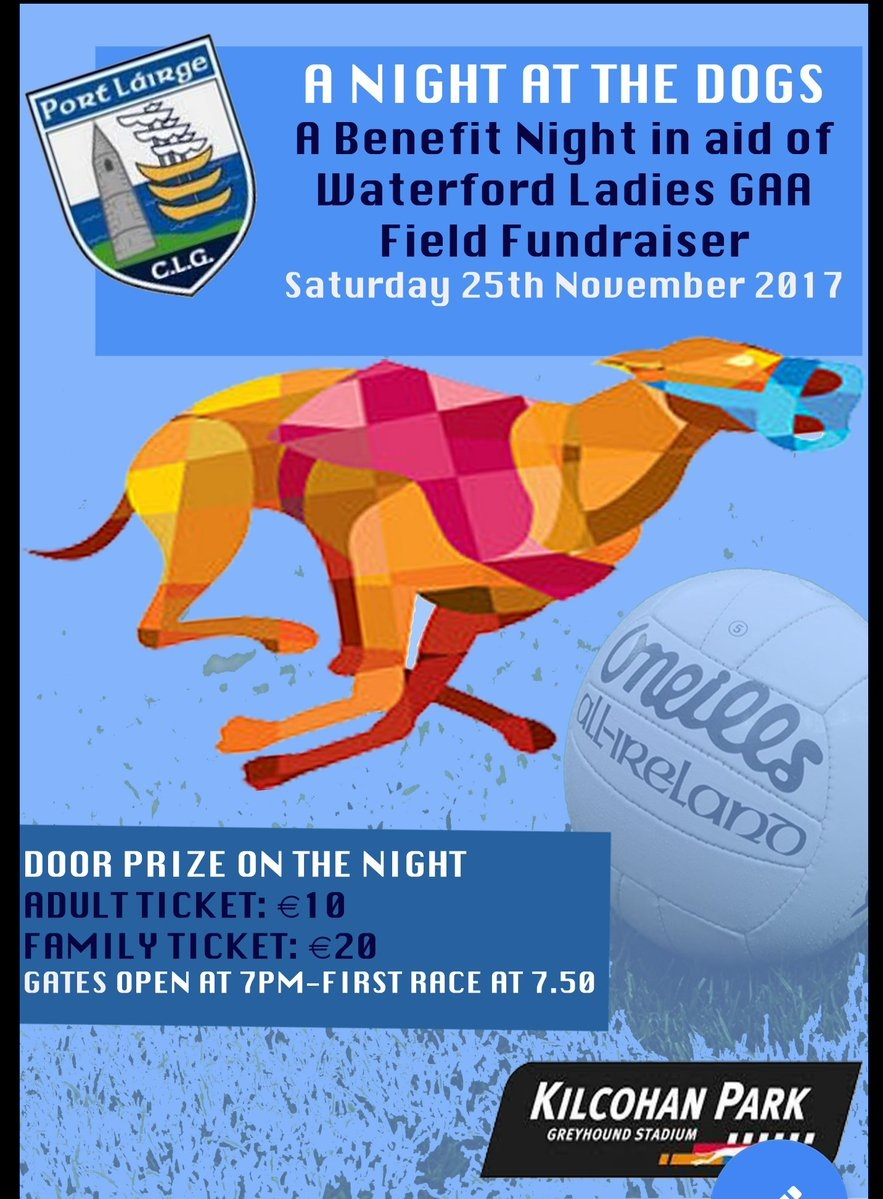 Fundraiser for Waterford Ladies Football tomorrow night
