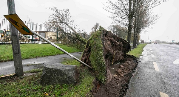 Waterford Council received over €500k in government funding to deal with aftermath of Storm Ophelia