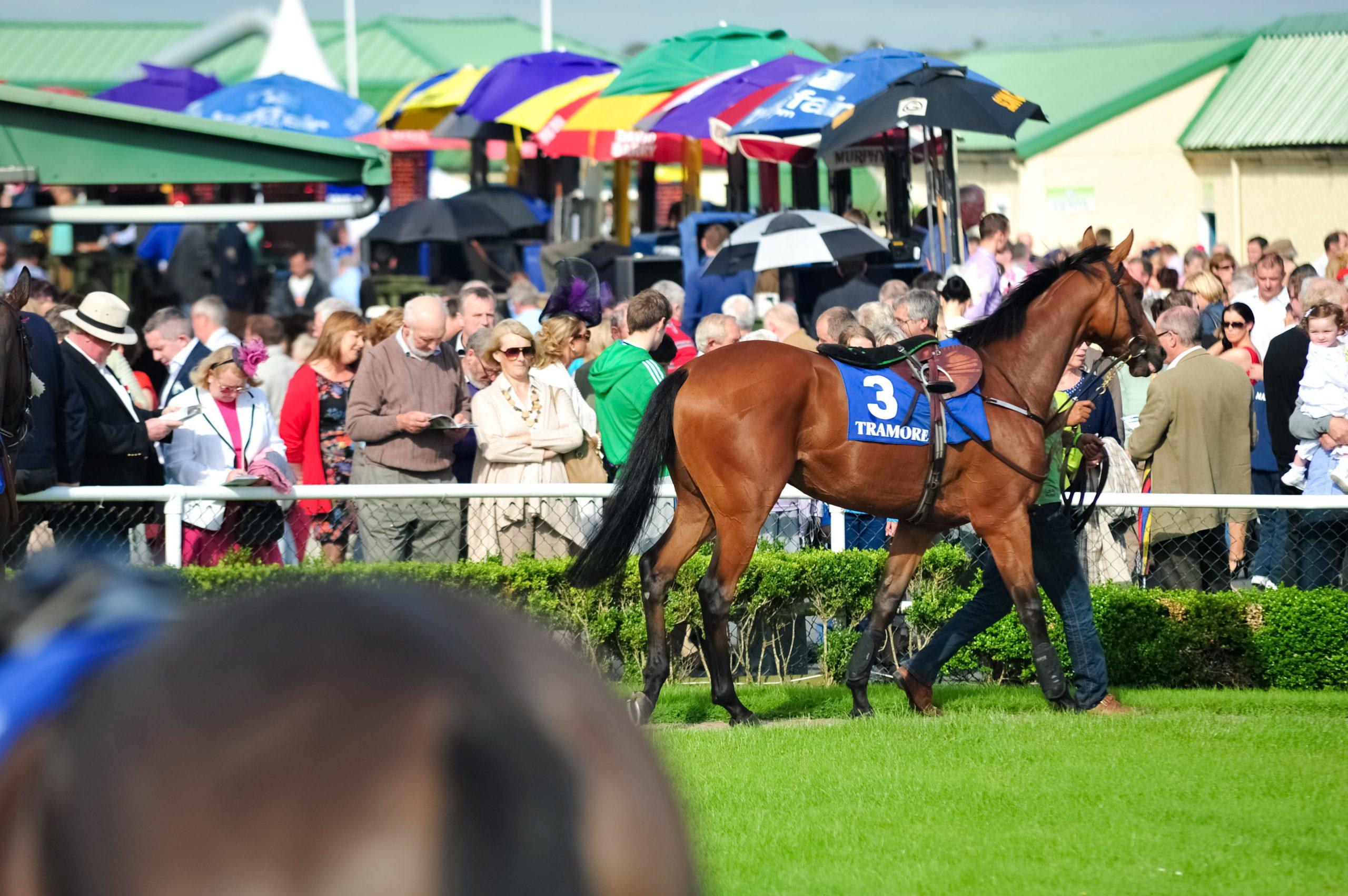 County Waterford jockeys score in the UK