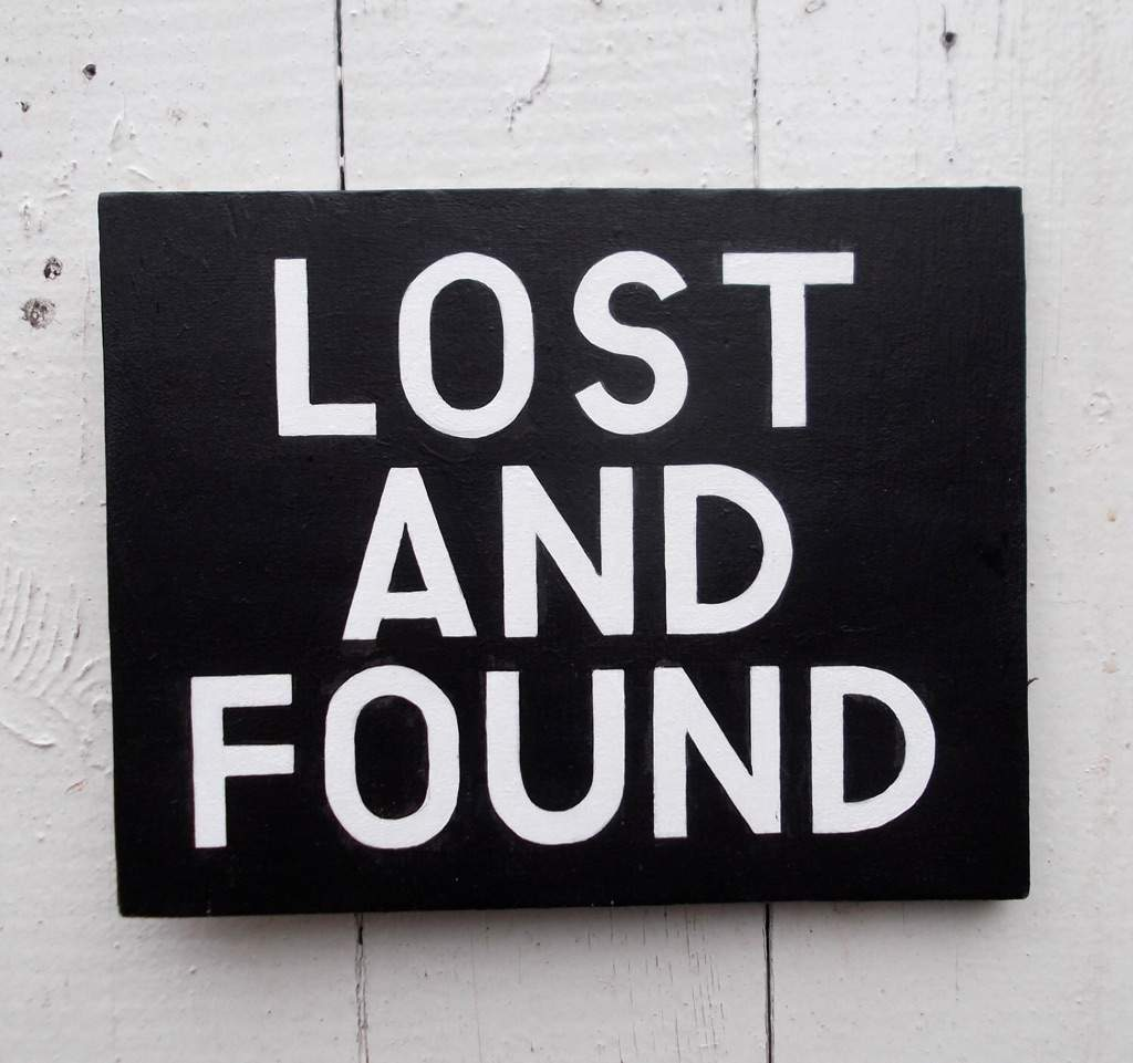 Found: young black dog