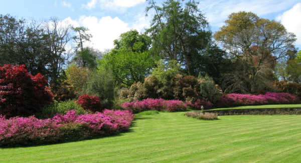 Mount Congreve Estate set to re-open to the public on St. Patricks Day.