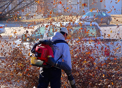 You Could Have Blown Me Away...With a Leaf Blower