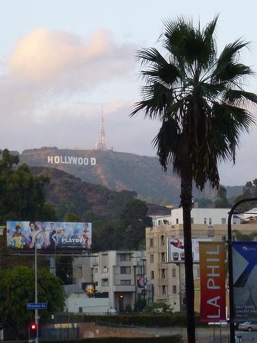 Sad Loss In Hollywood...