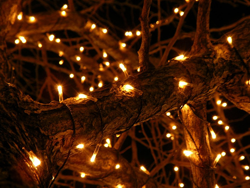 It's Science That Your Christmas Lights Get Tangled