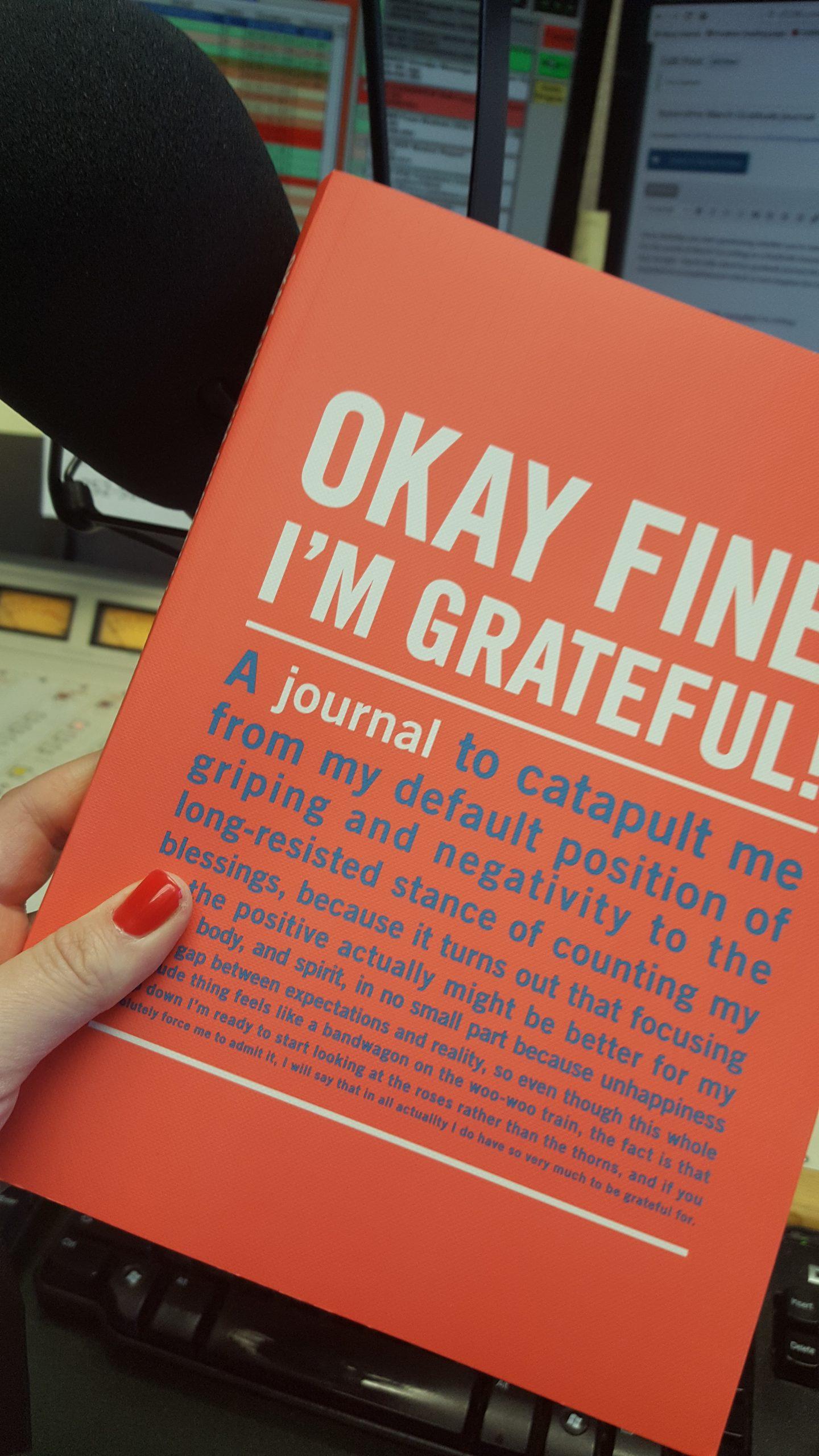 yearofme march gratitude journal 101 7 the bull burlington iowa