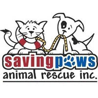 Saving Paws helps animals affected by Hurricane Harvey