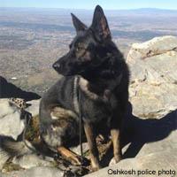 Oshkosh police have new K-9