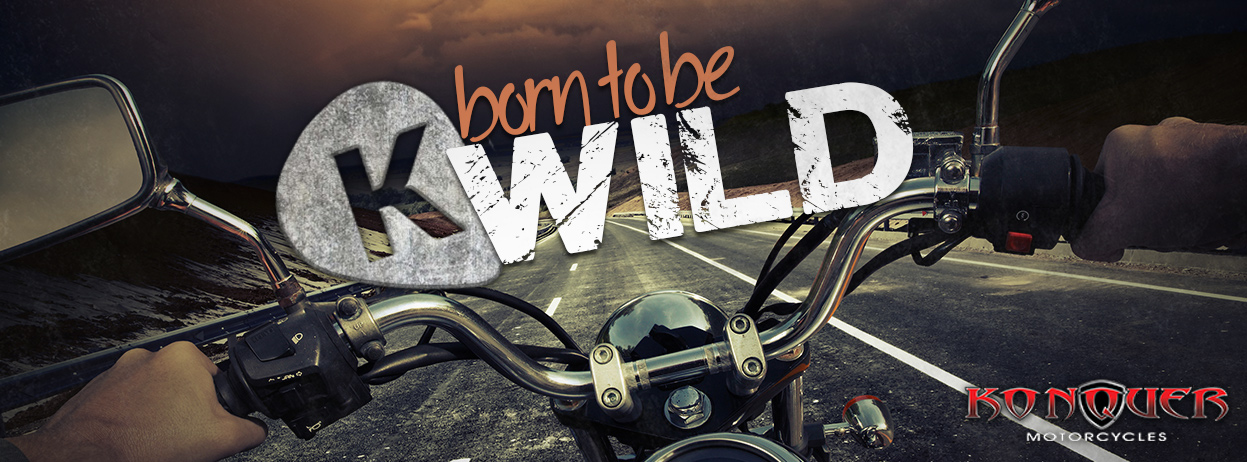 Bord To Be Wild