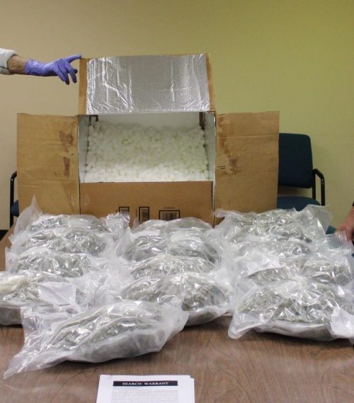 15 lbs. of marijuana seized near Trenton, two arrested