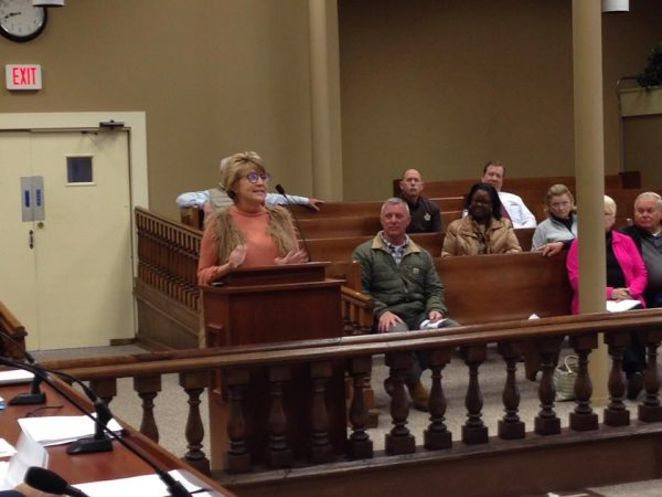 New library director updates fiscal court