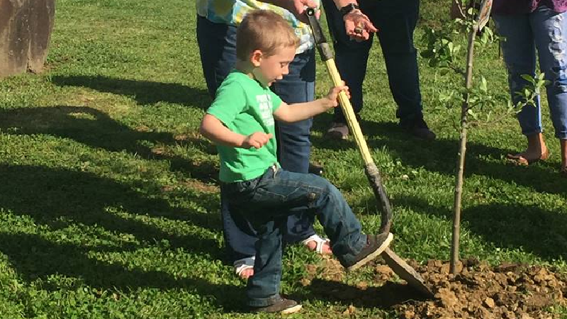 Arbor Day Celebrated in Paintsville