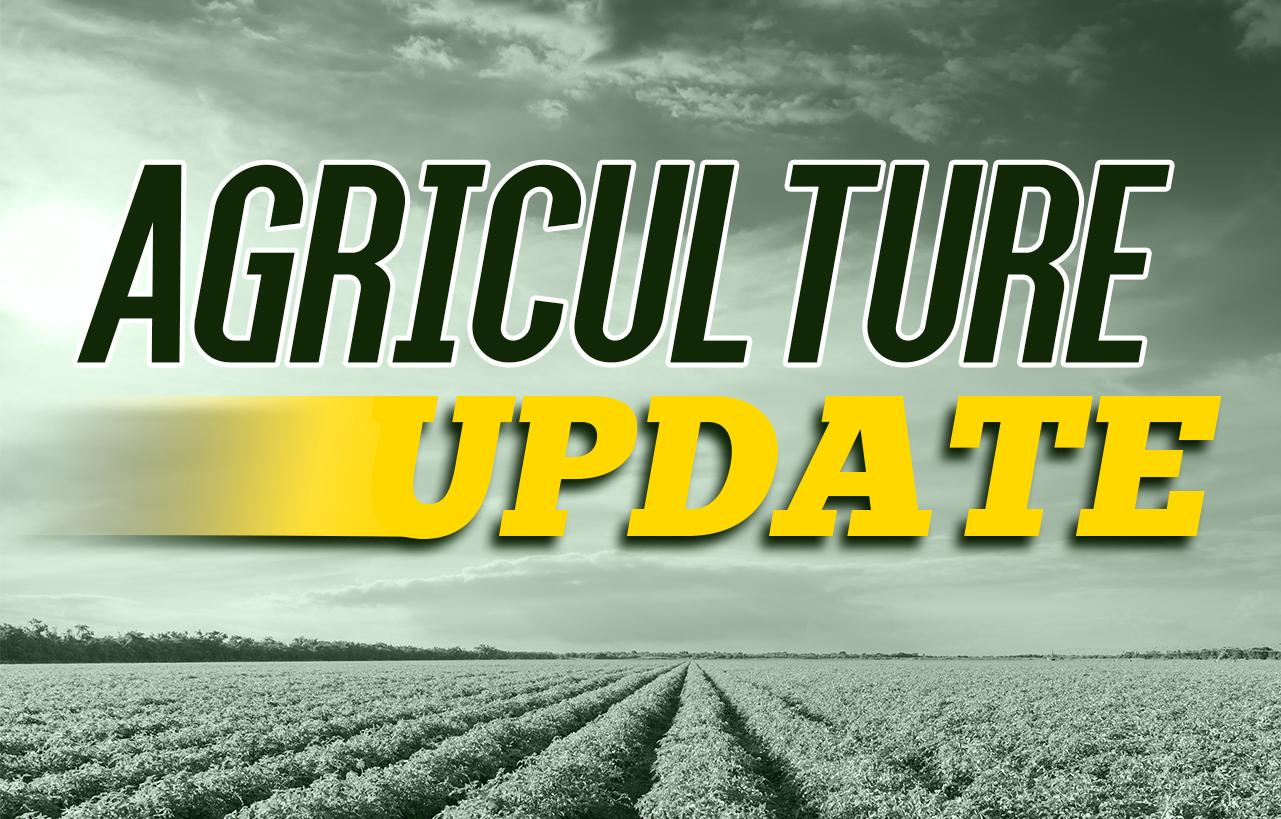 USDA CROP PROGRESS & CONDITIONS REPORT