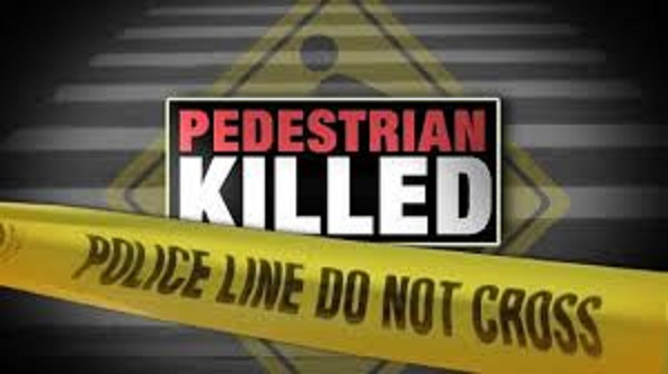 Pedestrian Dies After He Was Hit Trying To Cross The Road