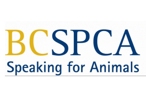 Kamloops SPCA moves another step closer to having a new facility
