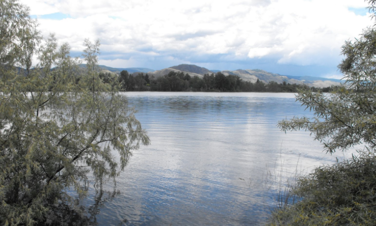 Kamloops Mounties plan to continue search efforts for reported body in Thompson River