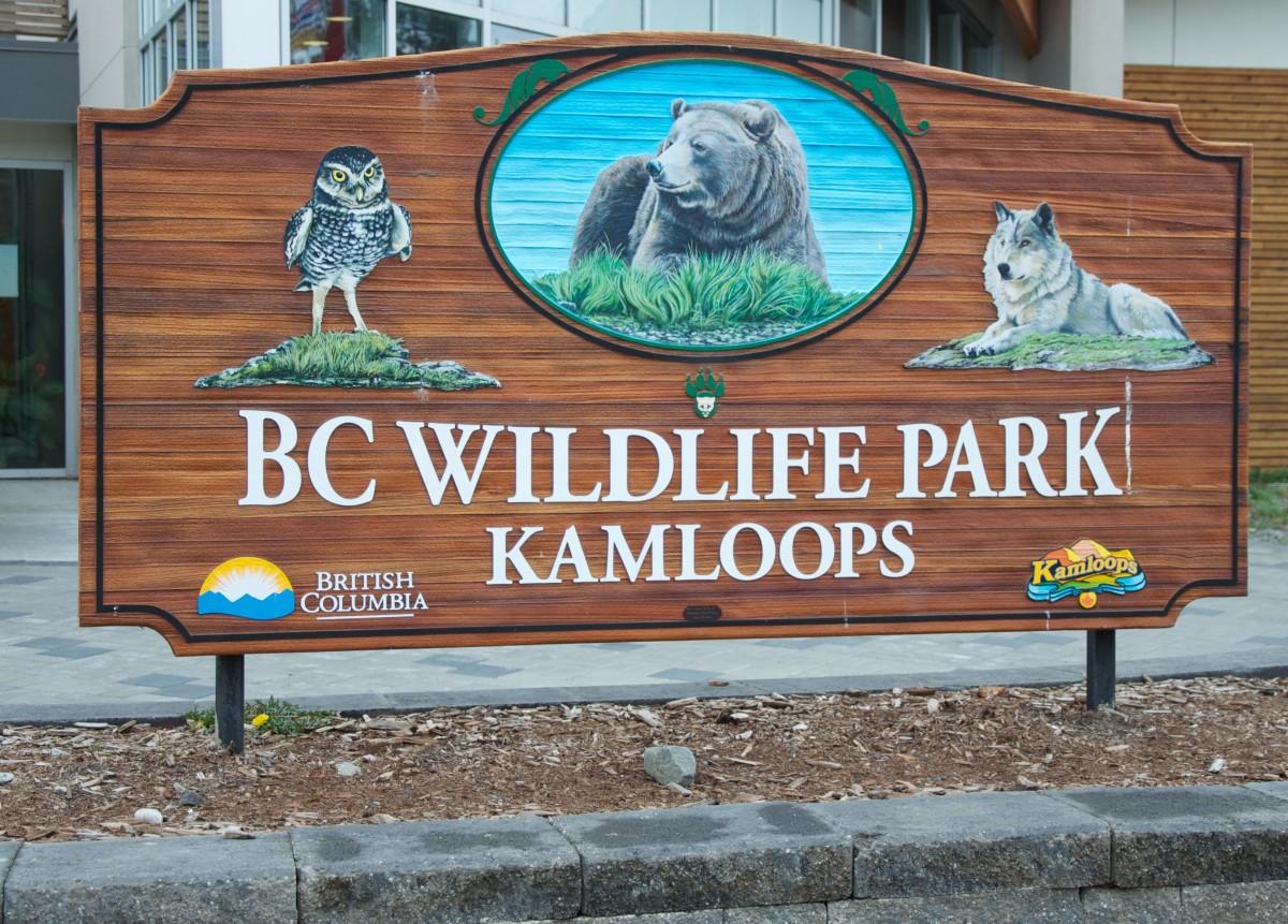 B.C Wildlife Park in Kamloops surviving rising flood waters so far
