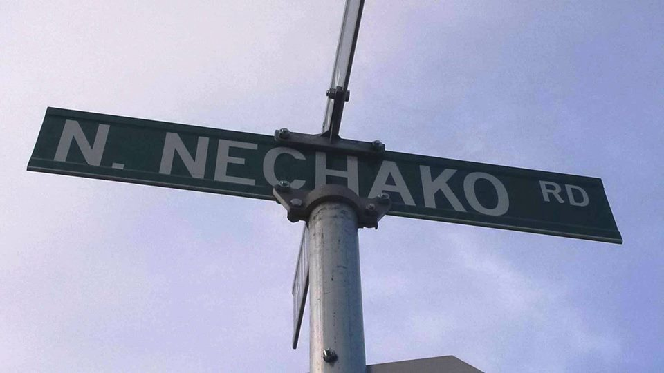 Petition for Bike lanes on N. Nechako!