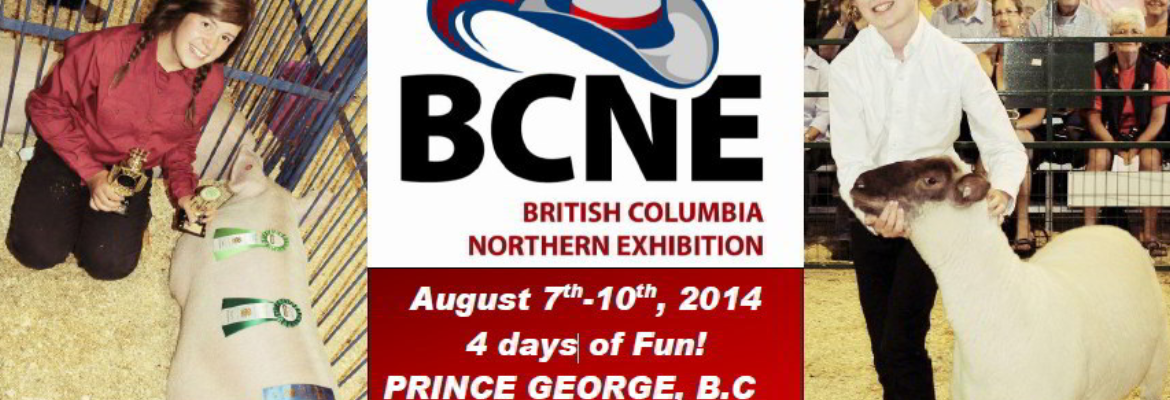 BCNE - What you need to know...