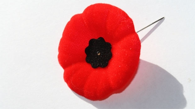 Remembrance Day information