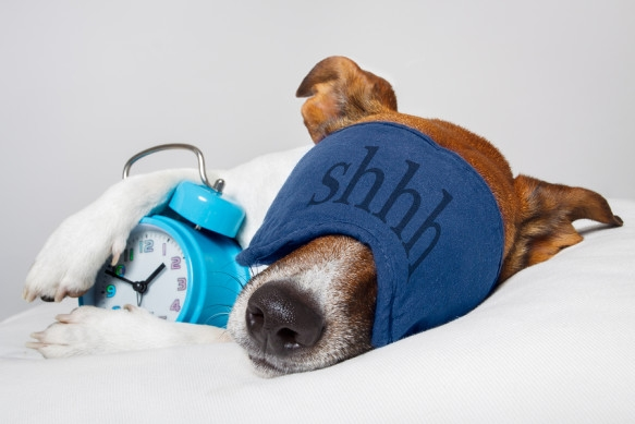 Good For You - Is Too Much Sleep A Bad Thing? Yes.
