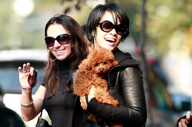 Pop Stars and Their Puppies