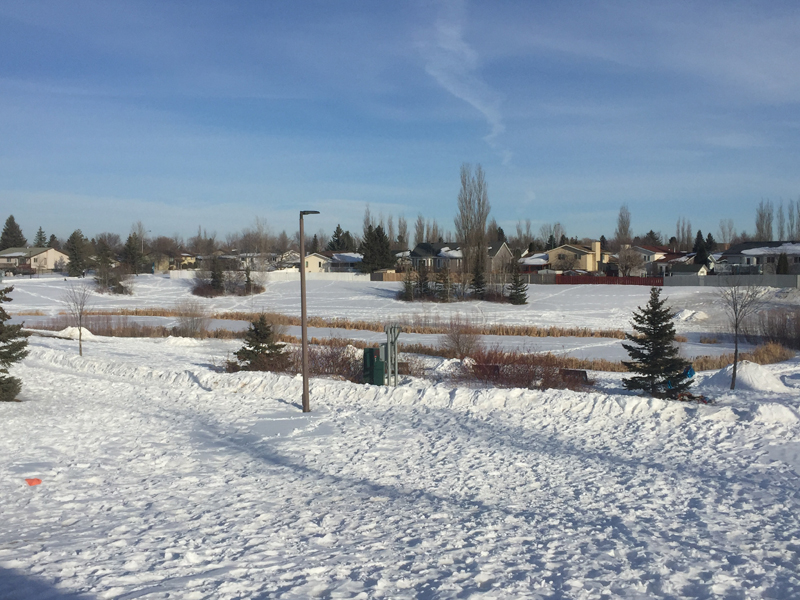 Storm Retention Ponds: Committee Recommends Partial Fencing