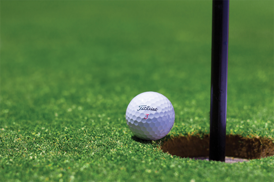 Unusual Pair Set to be First Saskatoon and Area Golf Courses to Open Saturday