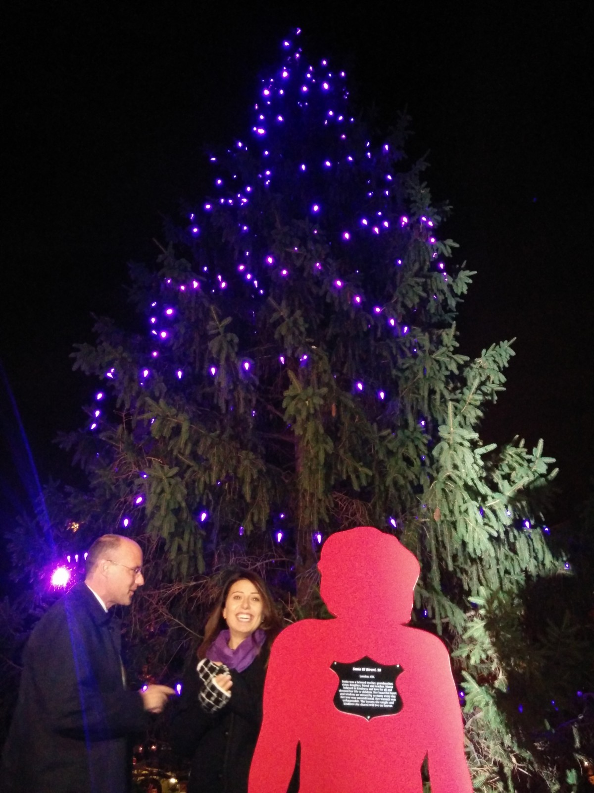 """""""Shine the Light on Woman Abuse"""" campaign lights up in Victoria Park"""