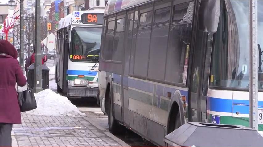LTC to offer free bus rides for children under 12 during March Break