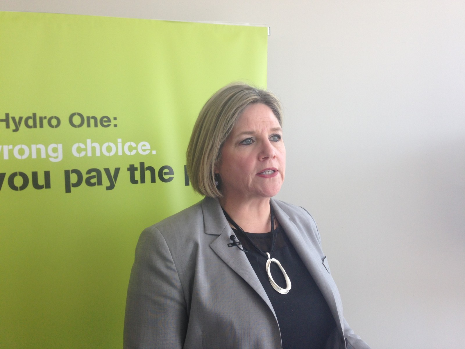 Ontario NDP Leader takes part in town hall meeting on privatizing Hydro One