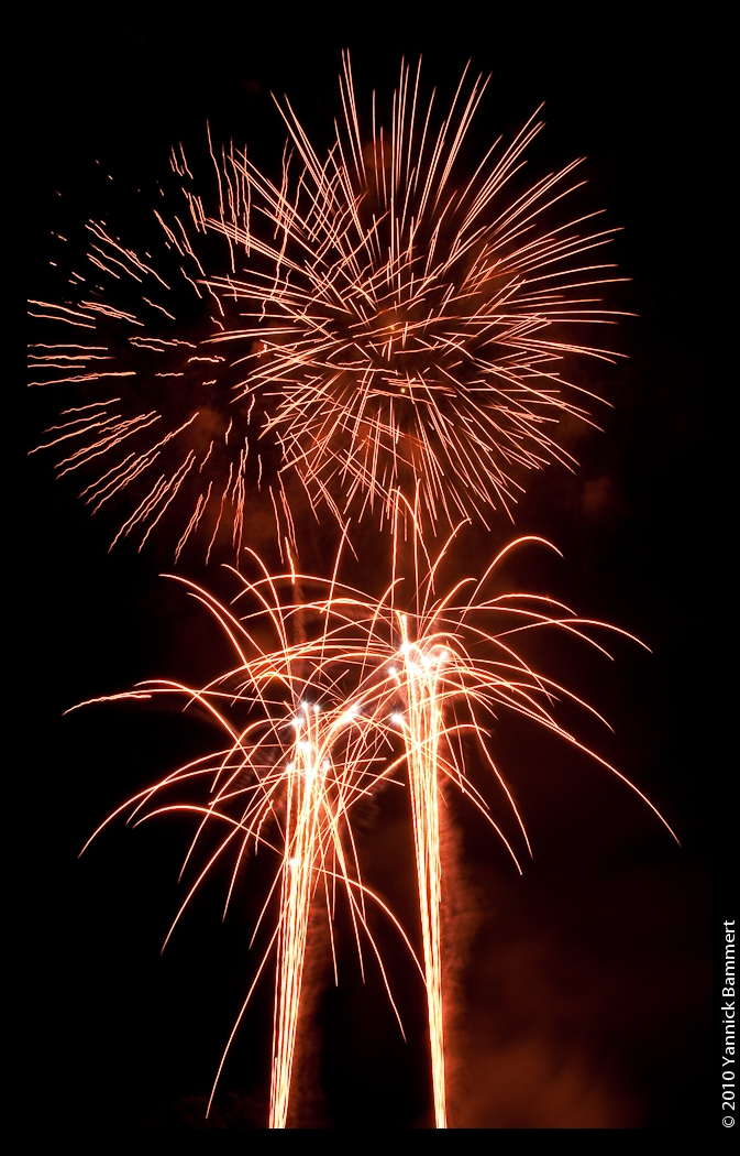 Preparing your pets can decrease stress during fireworks, thunderstorms