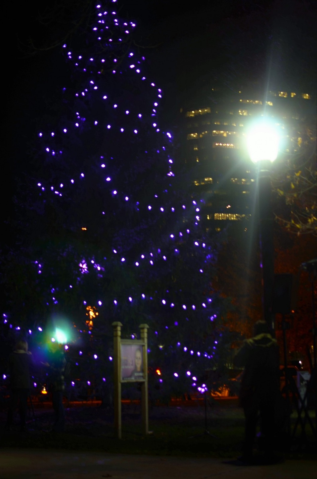 Londoners showed their support for abused women at the lighting of the 'purple tree' in Victoria Park