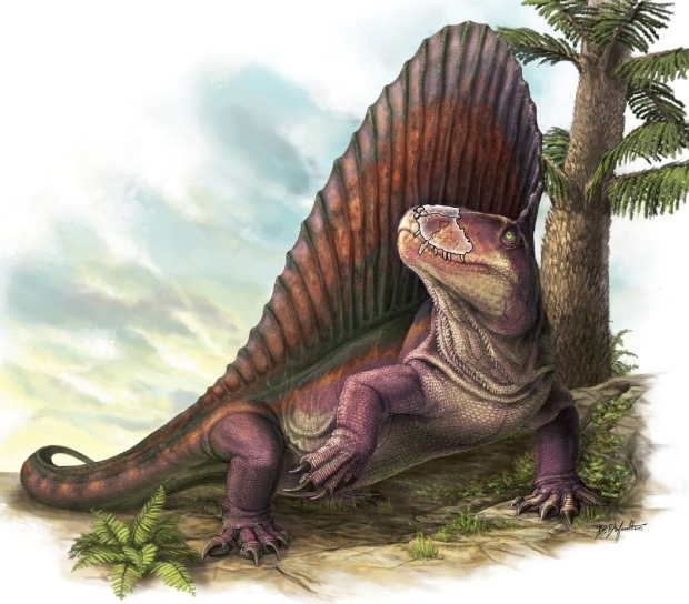 'Dinosaur' discovery overwhelms Canadian researchers