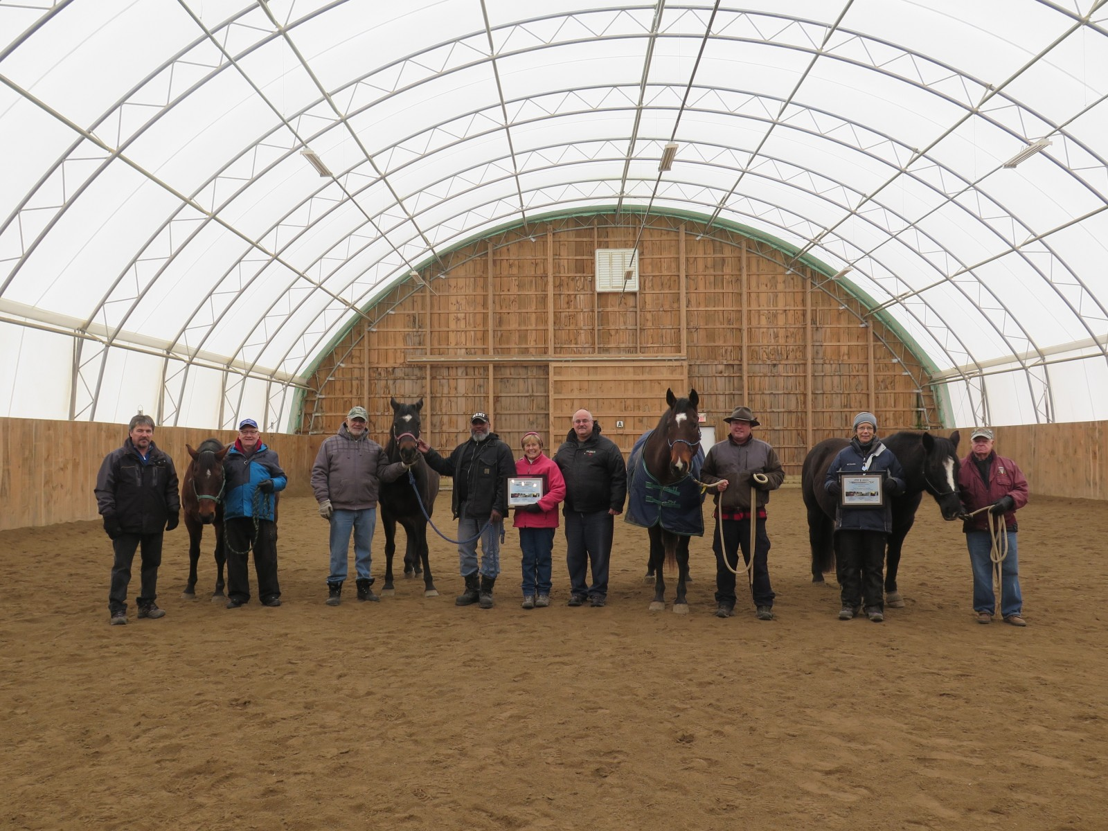 Horse therapy for veterans sparks local charity startup