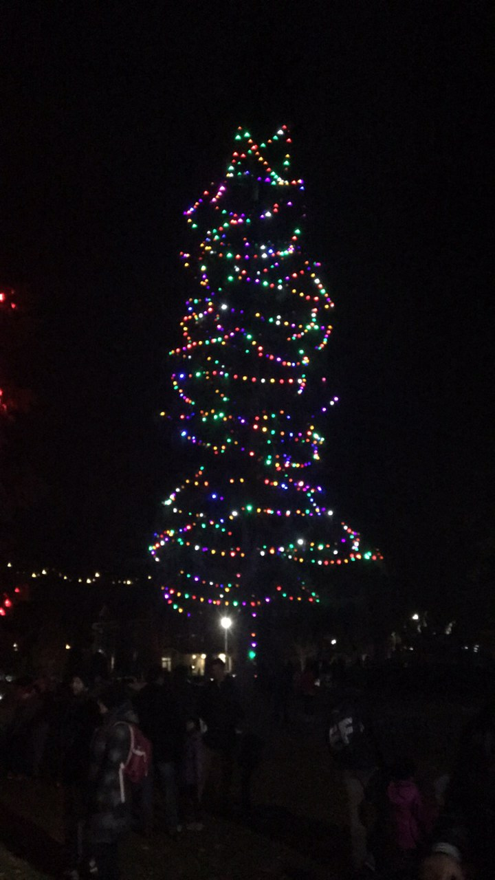 The Magical Lighting Of The Lights Was A Night To Remember