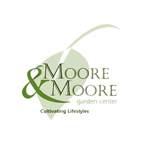 moore-moore-square