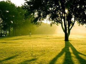 """Save Some """"Green"""" at Decatur Golf Courses"""