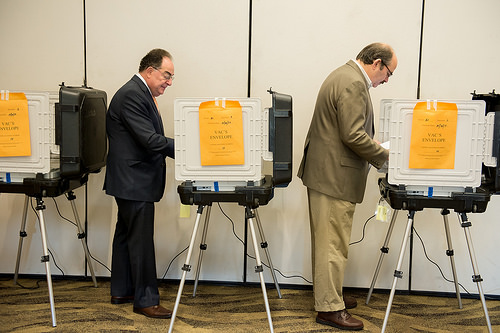 Voter Turnout Likely Just One In Three