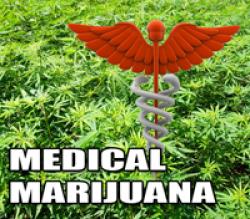 """Judge Orders """"Pain"""" Added ToIllinois' Medical Marijuana Program"""